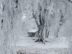 Winterliche Landschaft in Montlingen. (Bild: Toni Sieber)