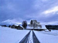Winterliche Naturlandschaft mit Bauernhof. (Bild: Urs Gutfleisch (Hildisrieden, 9. Januar 2019))