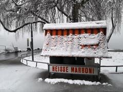 Der Schneefall am Zugersee. (Bild: Steffi Geske (10. Januar 2019))