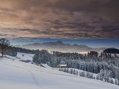 Die Ruhe nach dem grossen Schneefall, aufgenommen bei Egg Herisau. (Bild: Luciano Pau)