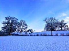 Morgenstimmung in der Winterlandschaft in Neuenkirch. (Bild: Urs Gutfleisch, 11. Januar 2019)