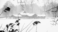 Frauenbadi im Schneetreiben. (Leserbild: Franz Häusler - 5. Januar 2019)