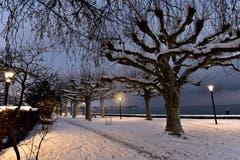Morgenstimmung im verschneiten Rorschach. (Bild: Robert Muralt