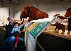 Stephane und Sohn Bastian Latouche entdecken Neues zum Mammut. (Bild: Stefan Kaiser (Zug, 13. Januar 2019))