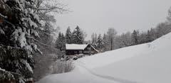 Winterliches Appenzeller Heimet unterhalb Rehetobel. (Bild: Klaus Businger)
