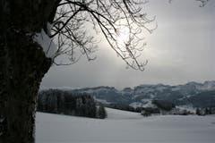 Schneeschuhtour zum Hohen Hirschberg (Bild: Vreni Tanner)