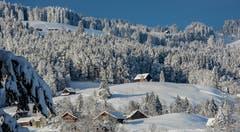 Schneelandschaft rund um Nesslau. (Bild: Renato Maciariello)