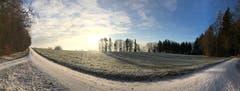 Der Panoramatrail auf dem Seerücken (Bild: Patric Sommer)