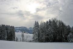 Blick zur Mans vom Hohen Hirschberg aus. (Bild: Vreni Tanner)