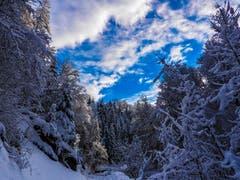 Spaziergang im verschneiten Nesslau. (Bild: Renato Maciariello)