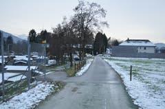 DiDie letzten Meter bis zum Schweizer Zoll sind ebenfalls von Schrebergärten gesäumt.