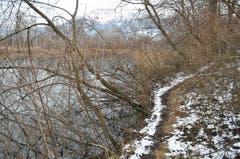 In Diepoldsau kann man direkt am Wasser entlang wandern.
