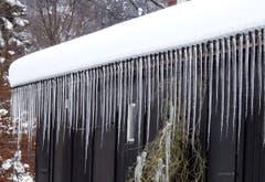 Eisiger Vorhang - Eiszapfen am Dach eines Hauses an der Brauerstrasse in St. Gallen (Bild: Doris Sieber)