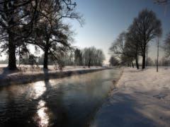 Winterstimmung am Rheintaler Binnenkanal. (Bild: Toni Sieber)