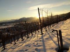 Das Rheintal mit Alpstein im Sonnenuntergang bei der Fähneren (Bild: Toni Weder)
