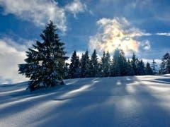 Winterliches Lichtspiel auf dem Raten (Bild: Peter Bumbacher (Raten, Oberägeri, 18. Januar 2019))