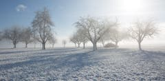 Endlich wieder einmal richtig Winter. (Bild: Priska Ziswiler-Heller (Ettiswil, 18. Januar 2019))