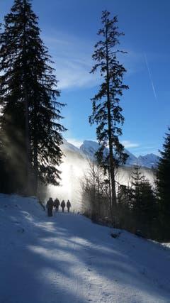 Nebelstimmungen auf dem Klangweg im Toggenburg. (Bild: Gillas Willi)