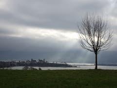 Die Lücke in der Nebeldecke sorgt für eine spezielle Beleuchtung des Schlosshügels von Rapperswil. (Bild: Hubert Koch)