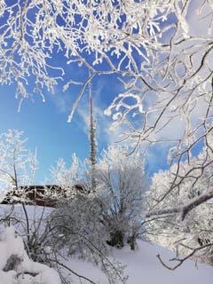 Das Hörnli im Schneezauber. (Bild: Roland Vogt)