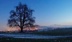 Wittenbach in der blauen Stunde. (Bild: Walter Schmidt)