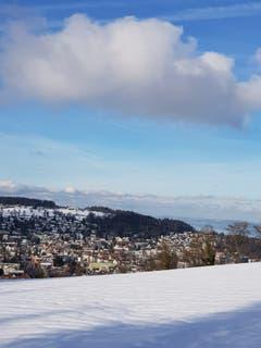 Aussicht von Scheitlinsbüchel Richtung Bodensee. (Bild: Reto Schlegel)