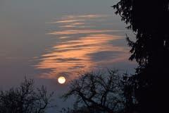 Wintersonne kurz vor dem Sonnenuntergang in Tobel. (Bild: Roland Kuttruff)