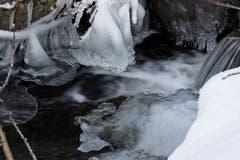 Eisbildung in der oberen Steinach, unterhalb des Wenigerweihers, St. Gallen. (Bild: Franz Häusler)