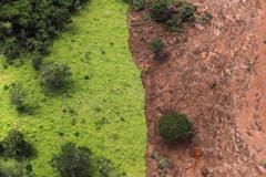 Die Schlammmassen bedecken weite Teile der Region. (Bild: EPA/Antonio Lacerda)