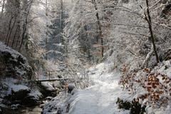 Idyllische Winterstimmung in der Teufelsschlucht (Bild: Irene Wanner (Hägendorf, 29. Januar 2019))