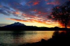 Abendrot über dem schönsten See. (Bild: Walter Buholzer (Luzern, 3. Januar 2019))