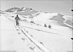 Skifahrer beim Aufstieg auf die Wolzenalp, aufgenommen im Jahr 1942. (Bild: Staatsarchiv)