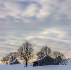 Winterruhe im Appenzellerland. Fotografiert bei Gonten. (Bild: Wolfgang Reisser)