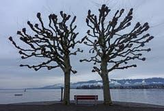 """""""Zäsur des Winters""""! Alles bleibt stehen! Aufgenommen in Arbon. (Bild: Walter Schmidt)"""