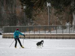 Sport trotz minus 34 Grad Celsius: Eine Frau ist in Minneapolis mit ihrem Hund unterwegs. (Bild: KEYSTONE/EPA/CRAIG LASSIG)