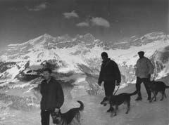 Lawinenhundeführer nehmen auf Trübsee im Winter 1960 an einem Kurs teil. (Bild: Mondo Annoni/Fotodok, Staatsarchiv Luzern PA 1374/518.1)