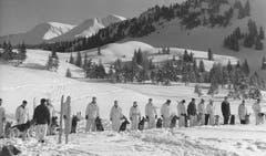 Auf dem Stoos werden 1963 Lawinenhunde ausgebildet. (Bild: Ernst Scagnet/ Staatsarchiv Luzern PA 1374/530)