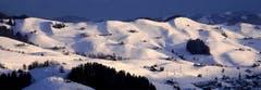 Endlich Schnee: Blick von der Lauftegg zum Hügelzug östlich der Hundwiler Höhe. (Bild: Peter Arnheiter)