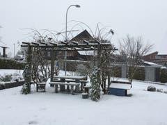 Der Garten in Reiden ist schneebedeckt. (Edith Achermann (Reiden, 5. Januar 2019))