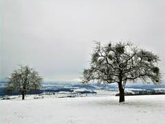 Wunderbare Winterlandschaft (Bild: Urs Gutfleisch (Geuensee, 6. Januar 2019))