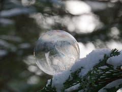 Eine gefrorene Seifenblase - ein magischer Moment. (Bild: Katharina Nagy)
