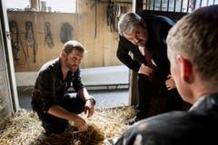 Ein Mordopfer in der Pferdebox. Samuel Streiff als Reto Doerig, Mike Müller als Luc Conrad, Martin Ostermeier als Dr. Alois Semmelweis. (Bild: SRF/Sava Hlavacek)