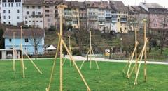 Es ist bei den Visieren geblieben: Das Projekt Altstadtgarten beim Wiler Stadtweier kommt in der vorgesehenen Form nicht zu Stande. (Bild: Gianni Amstutz)