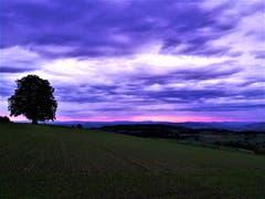 Wunderbar mystische Abendstimmung. (Bild: Urs Gutfleisch, Ruswil, 12. Oktober 2019)