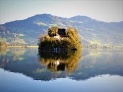 Herrlich, wie sich die Insel Schwanau im ruhigen Lauerzersee widerspiegelt. (Bild: Margrith Imhof-Röthlin, 12. Oktober 2019)