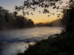 Morgennebel über der Thur. (Bild: Stepahn Lendi)