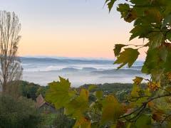 Morgenstimmung mit Blick von Kalchrain über das Thurtal. (Bild: Sabine Schoch)
