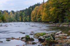Bunte Flusslandschaft an der Sitter unterhalb des Hätterenwald. (Bild: Franz Häusler)