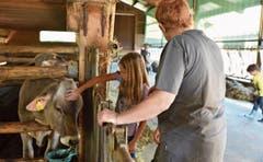Die Chälbli in Malans trinken ihre Milch, und auf Matug werden die Backwaren mit Ei bepinselt.