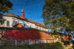 Das Kloster Notkersegg im Herbstkleid. (Bild: Christian Wild)